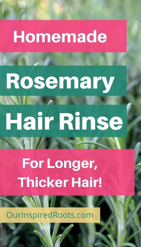 Homemade Rosemary Water for Hair and Scalp Health