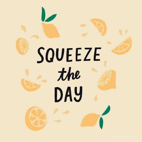 Squeeze the day lol. cute quote, inspiration #quotes #inspirational Seize the day.