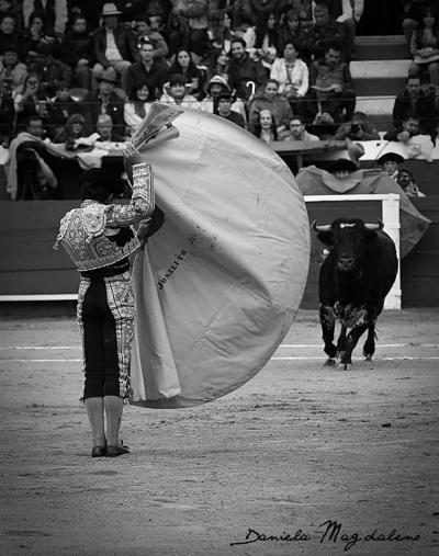 Pin On Spain Matador El Toro V Corridas De Toros