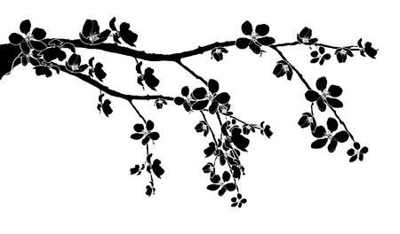 Black Branch Of Beautiful Seasonal Cherry Blossom Cherry Blossom Clip Art Cherry Blossom Vector Cherry Blossom Drawing