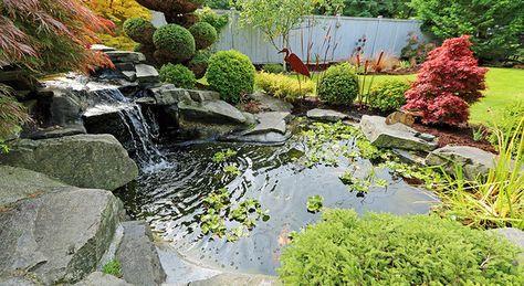 Teich Und Biotop Pflege Im Jahresverlauf Wasserfall Garten Wasserspiel Garten Garten