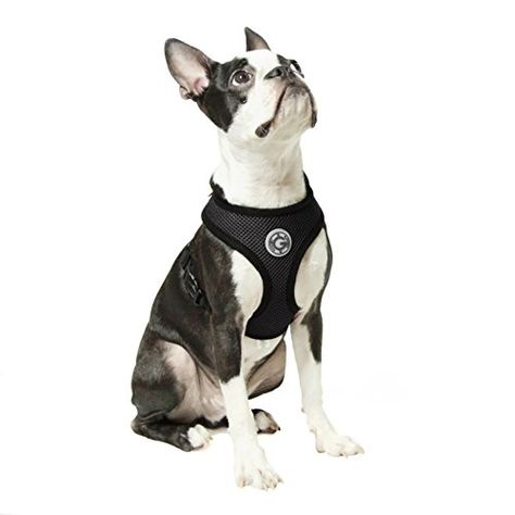Gooby Soft Mesh Harness For Small Dogs Medium Black Want