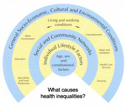 31 Medical Sociology Ideas Sociology Medical Infographic Health