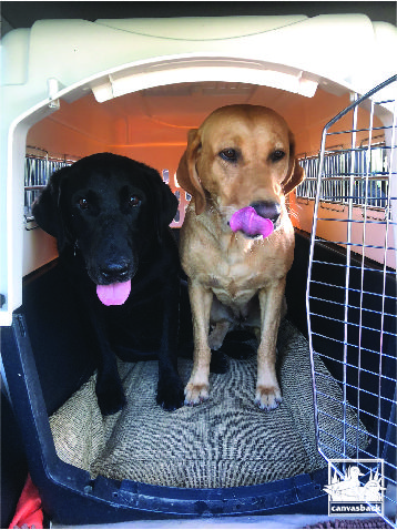 Funwithchesterfriday I Told Rio We Re Going To Make Some S Mores Canvasback Cargoliner Vehicleprotection In Outdoor Enthusiasts Dog Lovers Cargo Liner