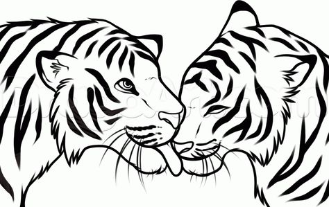 Line Drawing Of A Tiger S Face : Tiger line drawings for coloring animals tigers