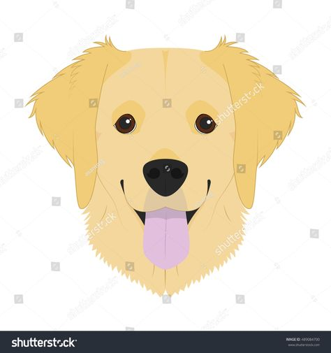 Golden Retriever Dog Isolated On White Stock Vector Royalty Free