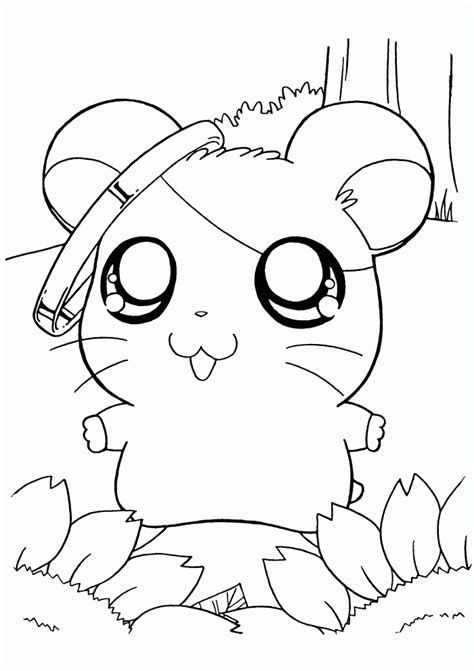 Cute Hamster Coloring Pages Image Search Results Cute Coloring Pages Hamtaro Coloring Pages