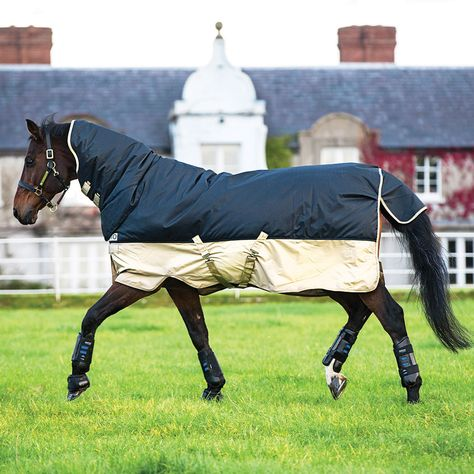Mio All In One Heavy 350g Turnout Rug From Rideaway Horse