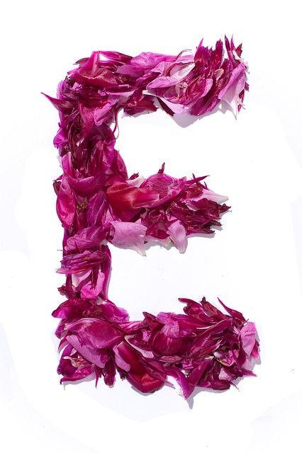 Flower Alphabet Floral Letters Flower Alphabet Printable Flower Coloring Pages