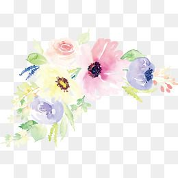 2020 的 Watercolor Flower Vector 主题