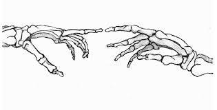 Dibujos De Manos De Calavera Busqueda De Google Tatuaje De Mano De Esqueleto Manos De Esqueleto Arte De La Esqueletica