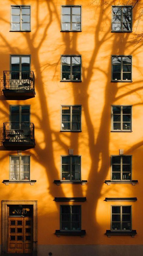 #orange #wall #shadow