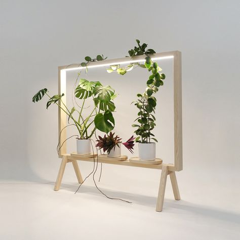 johan kauppi launches illuminated frame for potted plants at stockholm furniture fair 2018 - Wood Workings