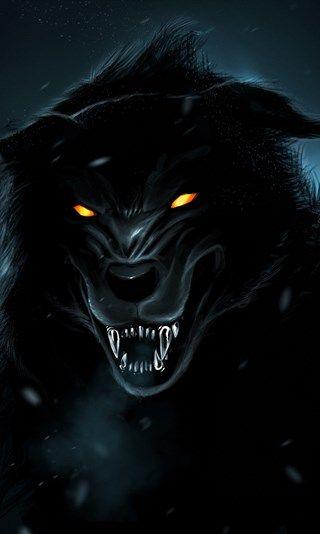 Black Wolf 4k La Nature La Nuit Les Predateurs Le Loup En 2020 Fond D Ecran Loup Fan Art Avengers Art Loup Garou
