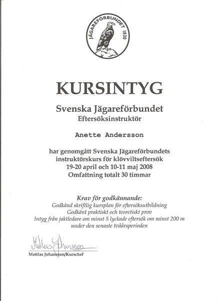 kursintyg - Sök på Google Kursintyg Pinterest Google - no objection certificate for passport