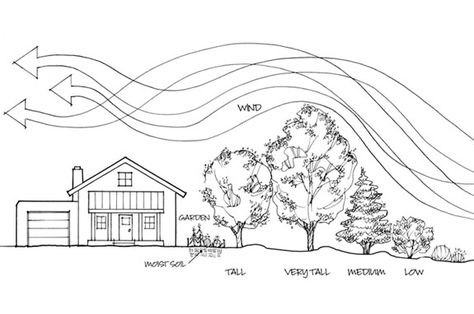 Creating a wind break to help save energy bills in cold climates. Creating a wind break to help save energy bills in cold climates. Landscape Architecture, Landscape Design, Garden Design, Architecture Design, House Design, Acreage Landscaping, Landscaping Ideas, Outdoor Landscaping, Permaculture Design