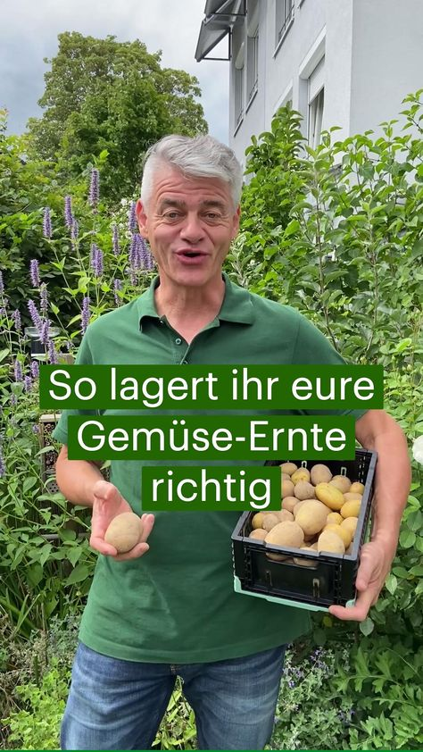 Gemüse-Ernte: So lagert ihr sie richtig ein