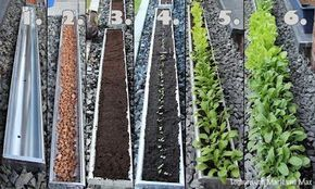 Salatzucht In Der Dachrinne Vertikaler Garten Garten Anpflanzen Balkon Pflanzen