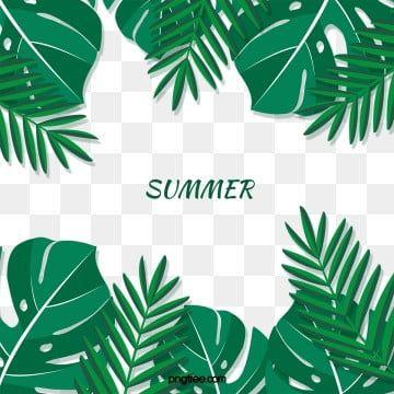 Summer Tropical Turtle Leaf Palm Tree Leaves Border Summer Tropic Leaf Png Transparent Clipart Image And Psd File For Free Download Leaf Border Palm Tree Leaves Flower Border
