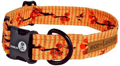 Kimono Dog Collar Dogs Dog Store