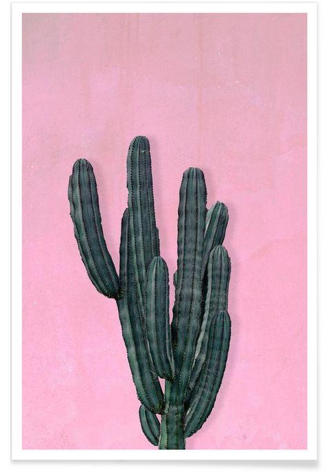 Kaktus als Premium Poster von typealive   JUNIQE