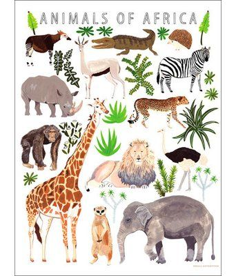 Oopsy Daisy Animals Of Africa Canvas Art Size 40 H X 30 W X 1 5 D African Animals Africa Animals