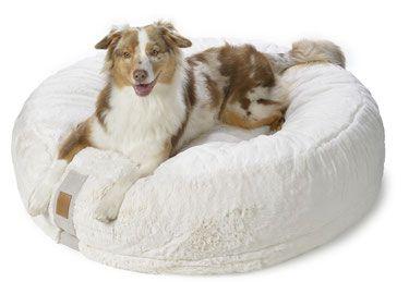Orthopadisches Hundebett Hyggebed Hundebett Xxl Orthopadisches