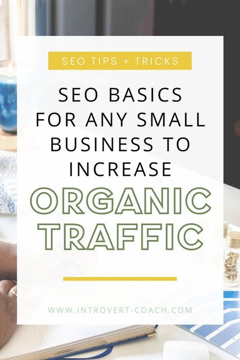 SEO Basics for Any Small Business to Increase Organic Traffic