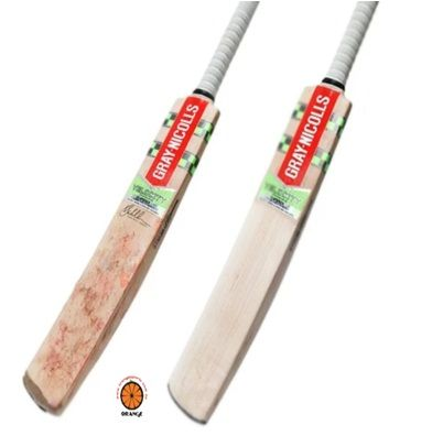 Looking For Cricket Bat Maintenance And