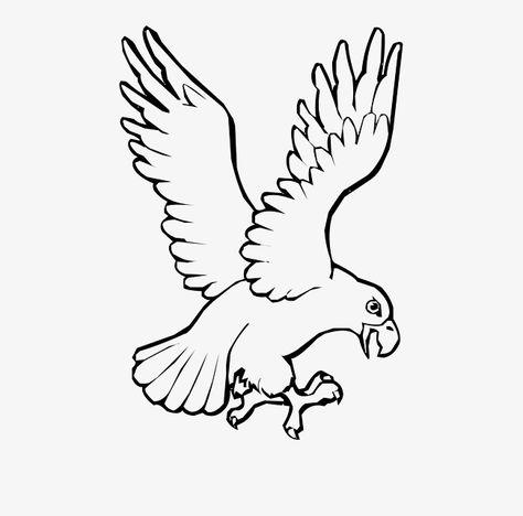 أبيض وأسود خطوط كرتون النسر Black And White Cartoon Eagle Vector Cartoons Vector