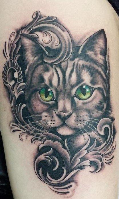 Dívky s kočičkami