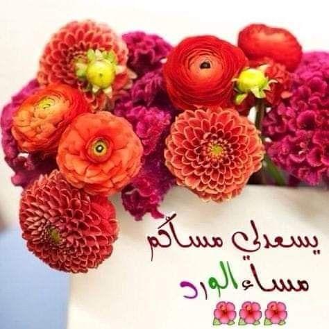 Pin By Aya Zoubeir On مساء الخير Crochet Earrings Crochet Raspberry