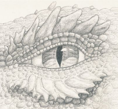 Found On Bing From Www Pinterest Com Butterfly Coloring Page Dragon Drawing Dragon Eye