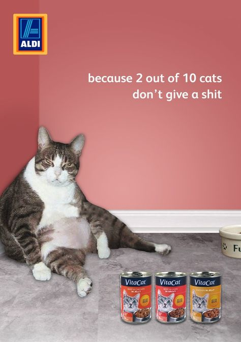 ALDI Is A Chain Of Discount Supermarkets Ads - Meatball the fat cat kept eating everyones food so his owners came up with a clever solution