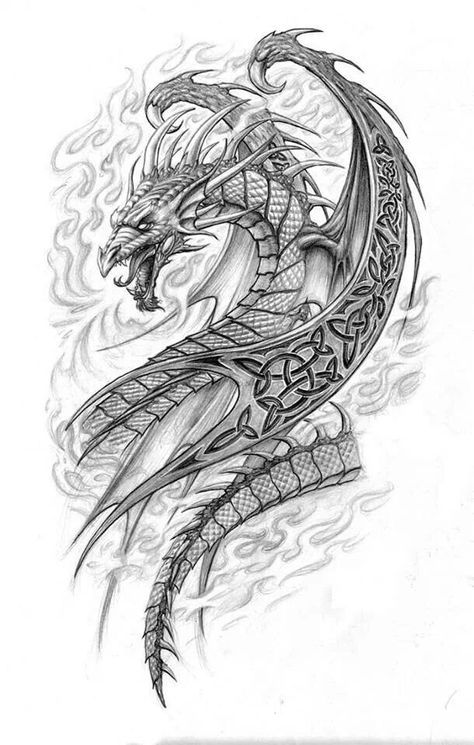 Dragon Fantasy Myth Mythical Mystical Legend Dragons Wings Sword Sorcery Magic Coloring Pages Colouring Adul With Images Celtic Dragon Tattoos Dragon Sketch Dragon Drawing