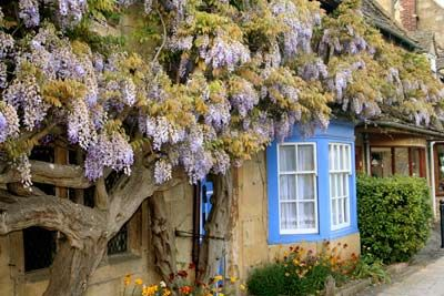 Cotswolds Property Guide Where To Buy A Country House Or Cottage