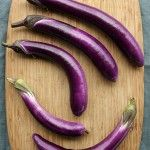 Ping Tung Long Eggplant - 2013 (1) HIgh Mowing Seeds