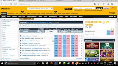 Hornet Dynamics provide best cricket betting software which