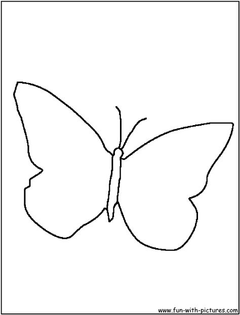 Butterfly Outline1 Png 800 1050 With Images Butterfly