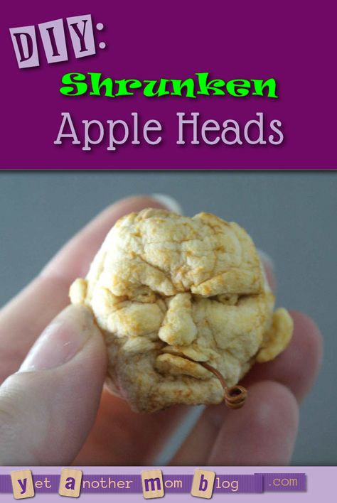 DIY: Shrunken Apple Heads - a good ol' fashioned craft that is cheap and easy... and guaranteed to make you laugh!