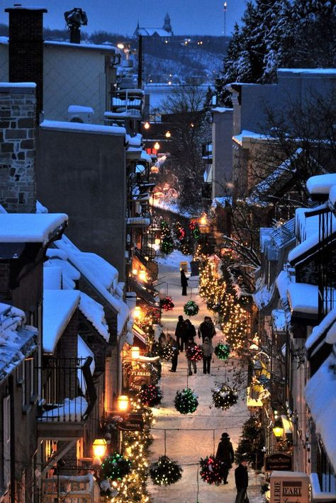 quebec city, canada in christmas time Magical Christmas, Merry Little Christmas, Cozy Christmas, Christmas Lights, Christmas Time, Christmas Decorations, Canada Christmas, Christmas Shopping, Quebec City Christmas
