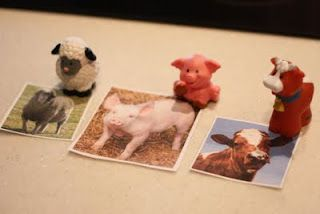 Matching Animals to Pictures - good activity for students with autism - somewhat abstract match (photo to cartoonish character) is a challenging mental exercise.