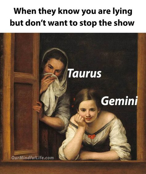33 Funny Gemini Memes That Totally Get The Vibes Being A Gemini