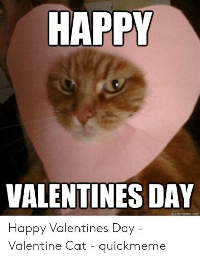 14 Free Happy Valentines Meme Picture 2020 Valentines Day Memes Valentines Memes Happy Valentines Day Funny