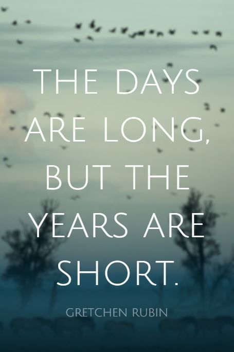 Time Goes By So Fast Wasn T It Just 1999 Wordstoliveby Naturalparentingthoughts Fast Quotes Pretty Quotes Positive Quotes For Friends