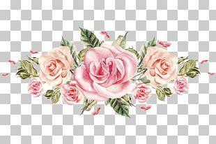 Rose Png Images Rose Clipart Free Download Flower Illustration Flower Bouquet Drawing Flower Border
