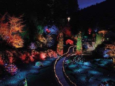 830a559357682f4da15992f9877312e1 - The Butchart Gardens Christmas Lights Tour