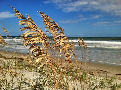 Palmetto Dunes, Hilton Head Island, South Carolina