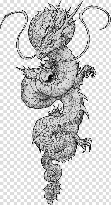 Dragon Tattoo Sketch, Dragon Tattoo Back, Dragon Sleeve Tattoos, Dragon Tattoo Designs, Dragon Tattoos For Men, Tattoos For Women, Kunst Tattoos, Tattoo Drawings, Tattoo Sketches