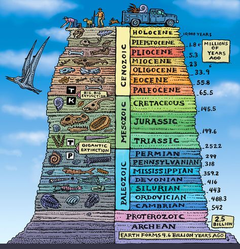 AGES OF ROCK ART POSTER Troll Art is part of Geologic time scale AGES OF ROCK Ray Troll& fine artwork printed with high quality, lightfast inks on heavyweight acidfree paper Each art poster is in -